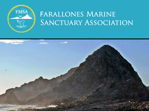 Farallones Marine Sanctuary Foundation