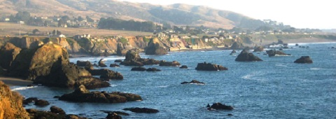 Picture of Sonoma County coastline