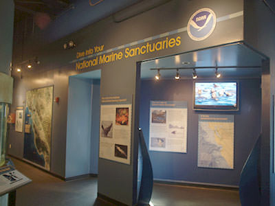 photo of the Dive Into Your National Marine Sanctuaries exhibit at the Aquarium of the Bay