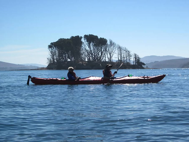 Places to go greater farallones national marine sanctuary for Tomales bay fishing report